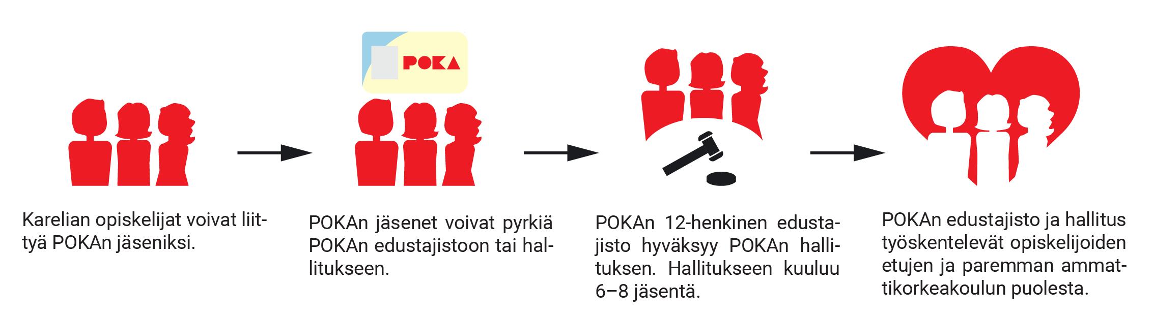 Karelia-amk:n opiskelijat voivat liittyä POKAn jäseneksi ja POKAn jäsenet voivat hakea POKAn hallitukseen tai edustajistoon, infograafi.